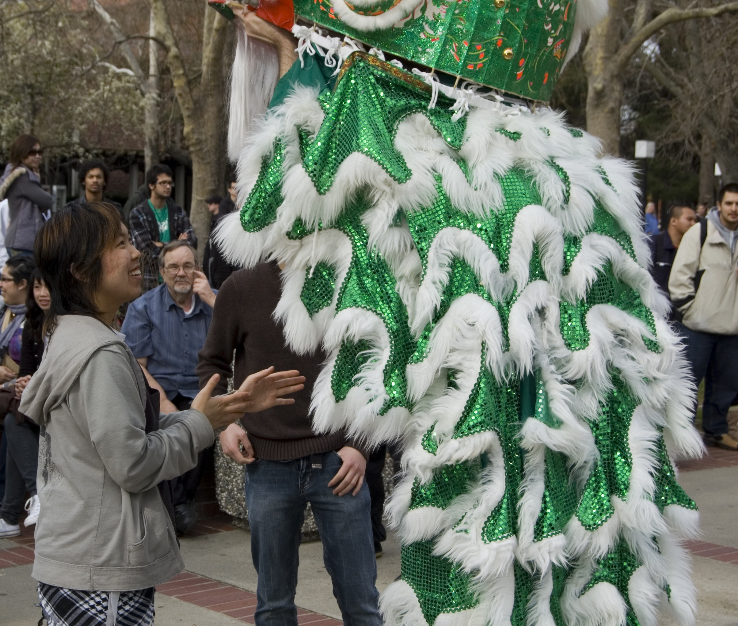 Spectators are chosen to wear the Lion Dance costume.