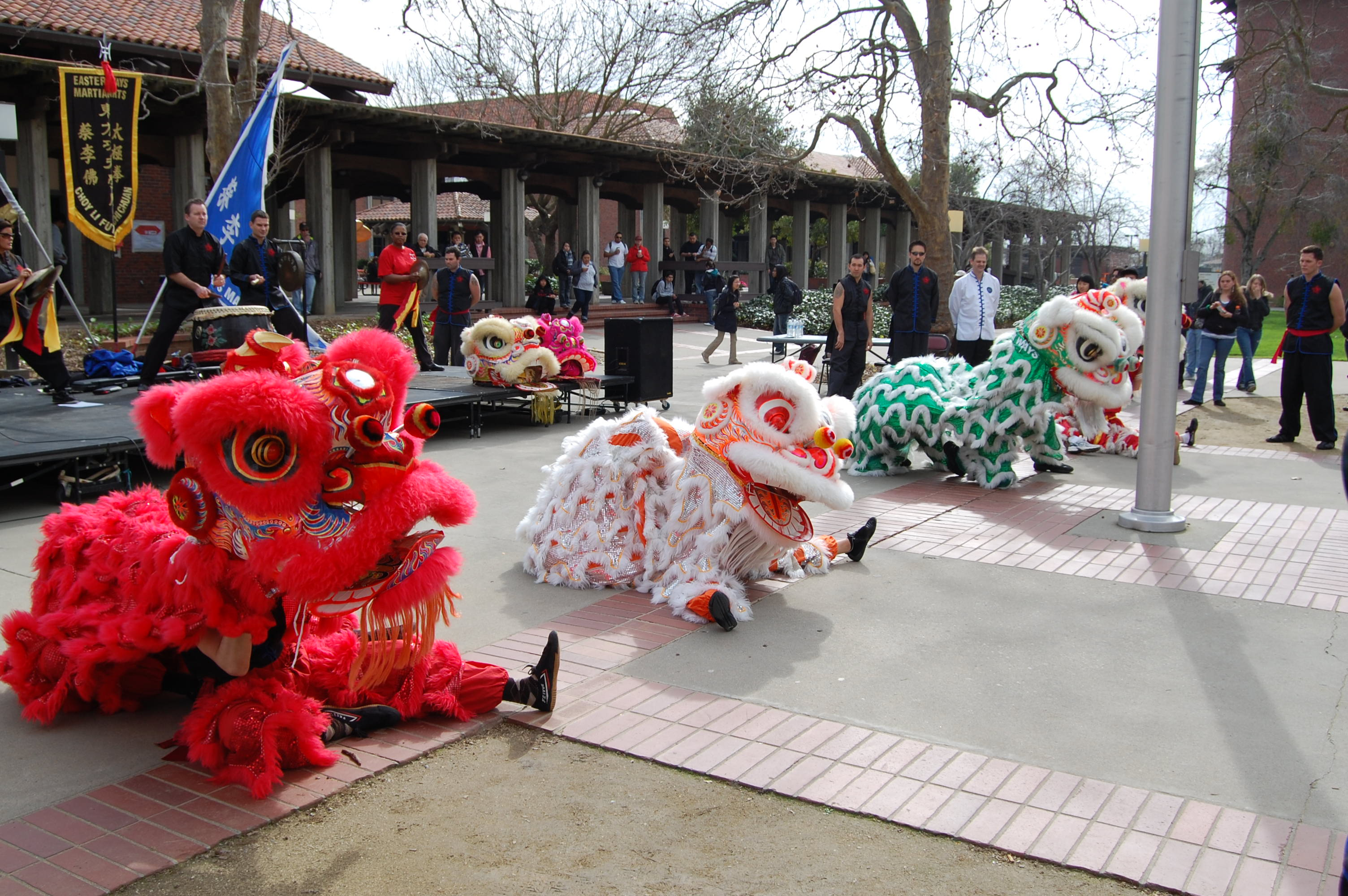 Eastern Ways members perform a traditional Chinese Lion Dance.