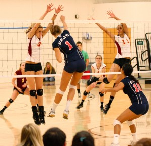 Panthers volleyball team falls to Mudcats