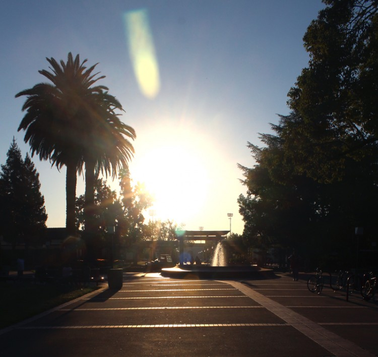 The sun is rising in the east over the water fountain of city college campus.