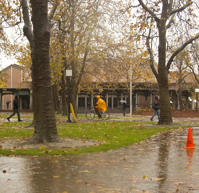 Students make their way across the City College quad in the rain.