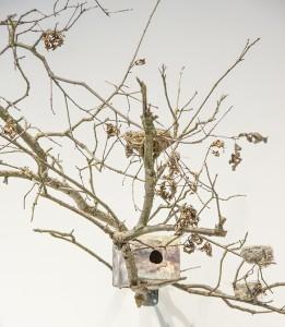 Avian homes fill Kondos Gallery 4/11