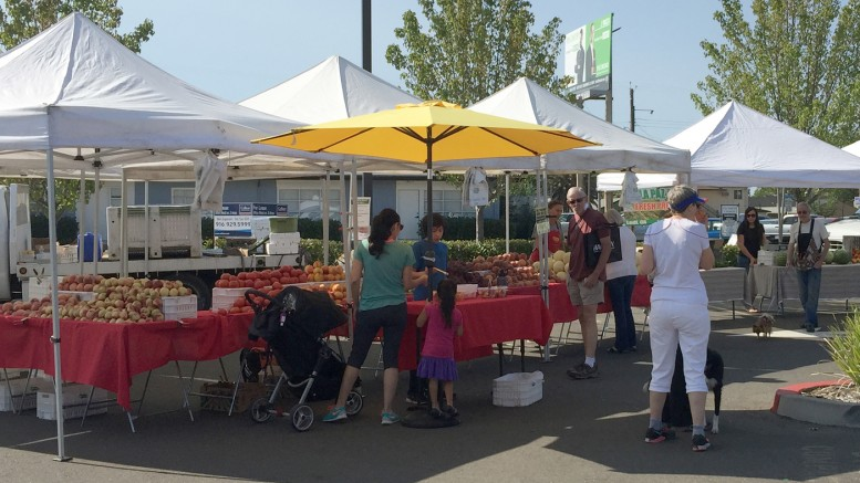 Local neighborhood families out enjoying the the Farmer's Market on the City College campus Sunday Aug. 31, 2015.