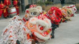 Eastern Ways Martial Arts performs the Traditional Chinese Lion dance at the West Sacramento City College Center for the upcoming Chinese New Year. Guillermina Bedolla, Staff Writer. | gbedolla122@yahoo.com