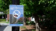 Flyers cover the City College campus reminding students of the new ban on smoking on campus. Cameron Richtik | cameronrichtikexpress@gmail.com | Staff Photographer