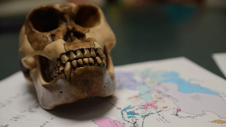A skull sits on papers, including a map of Southeast Asia and Australia. Bobby Castagna | Staff Photographer | bcastagna.express@gmail.com